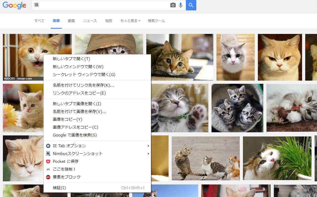 2016-07-18 10_32_41-猫 - Google 検索